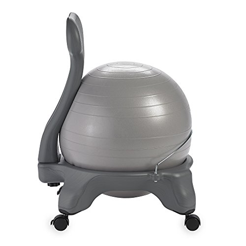 Gaiam-Balance-Ball-Chairs-0