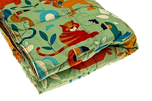 Premium-Weighted-Blanket-by-InYard-Weighted-Blanket-for-Kids-Weighted-Sensory-Blanket-0