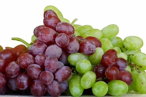 tratamiento-frutal