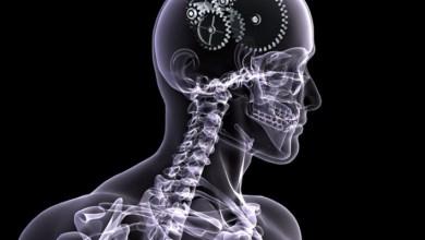 Photo of Рентгенографія черепа і шийного відділу хребта