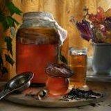 Photo of Чим корисний чайний гриб для організму