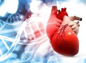Photo of Серйозне порушення обміну білка або амілоїдоз серця