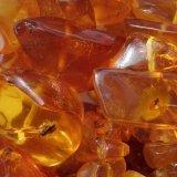 Photo of Корисні властивості і застосування янтарної кислоти
