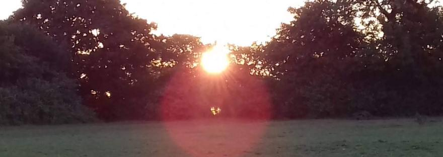Summer Solstice Sunrise from the behind the hedge