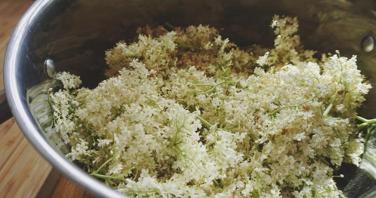 Plūškoka ziedu sīrups