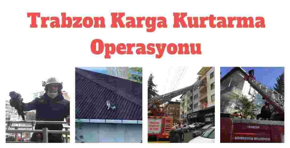 Trabzon Karga Kurtarma Operasyonu