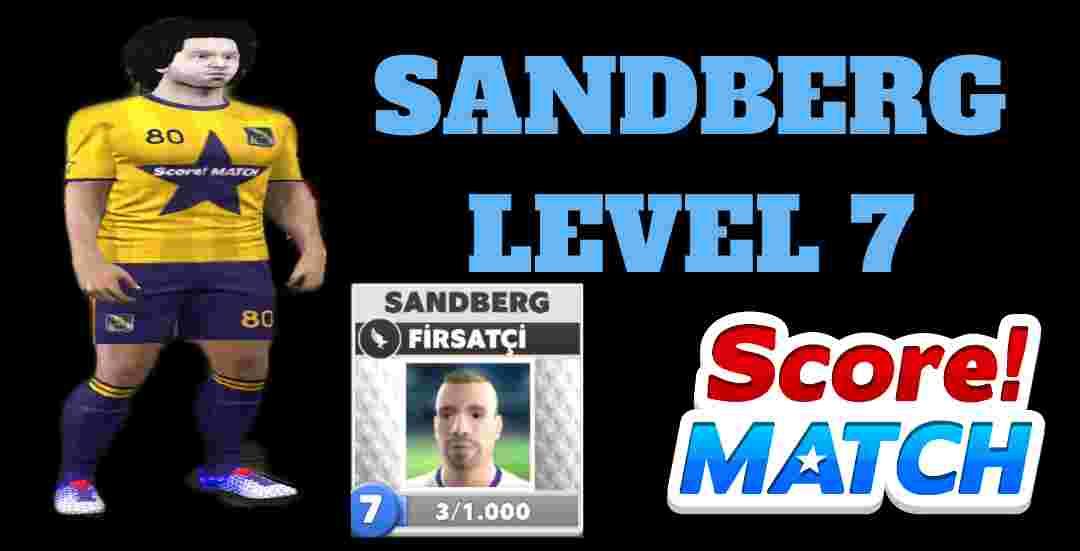 Sandberg Seviye 7