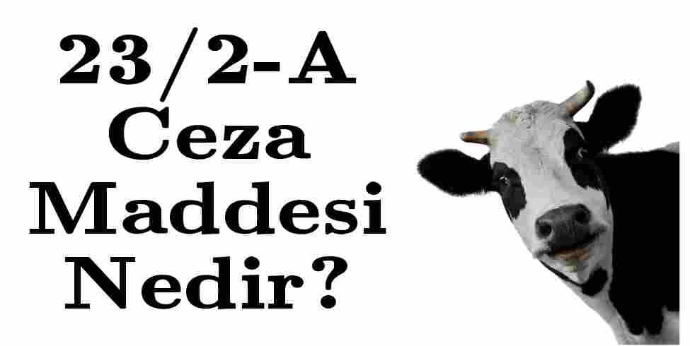 23/2-A Ceza Maddesi