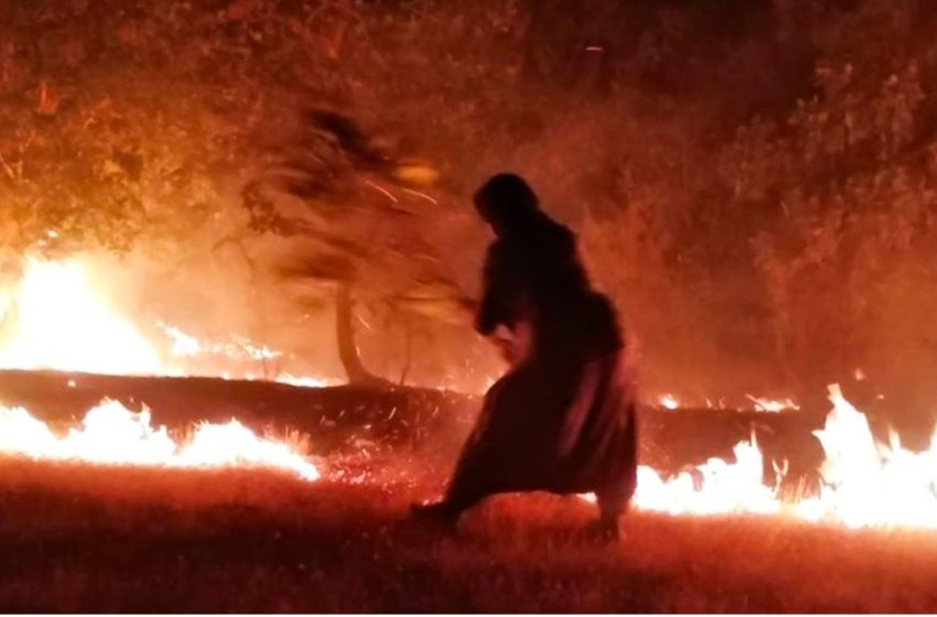 No attempt to extinguish forest fires in Mount Cudi