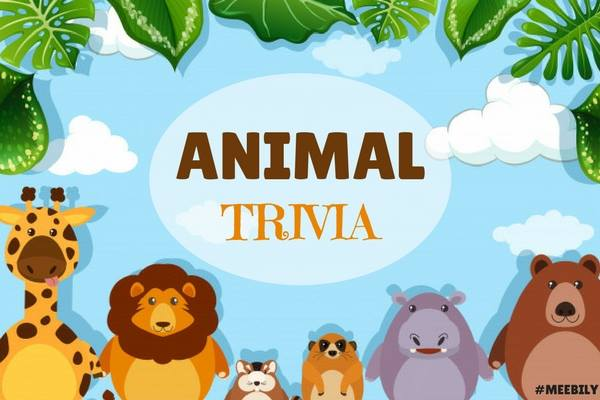 animal trivia question and answers