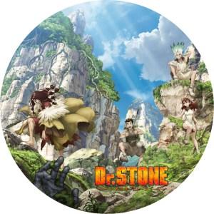 Dr. STONE ドクターストーン 1期(2)のDVDラベルです