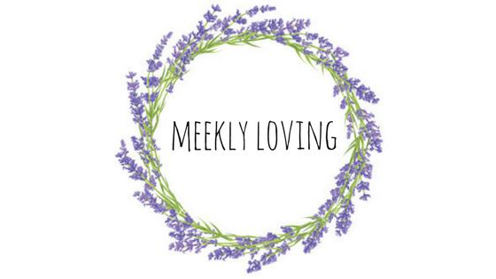 Meekly Loving by Sydney Meek