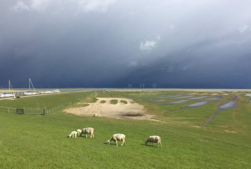Drama über Nordstrand
