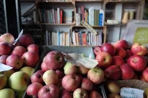 Äpfel und Bücher