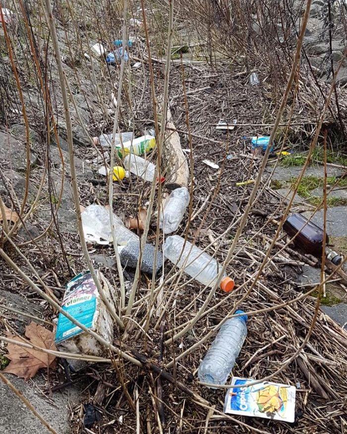 Plastikflaschen und anderer Müll, der ein achtlos weggeworfen wurde