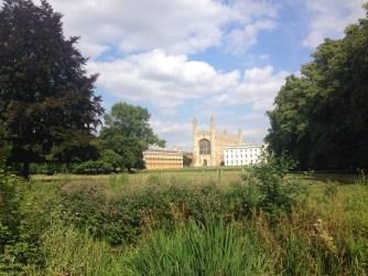 Cambridge grounds