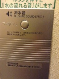Wait... what? It didn't even sound real, it sounded like a mechanical flushing noise.