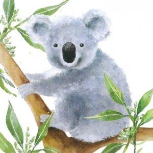 Servetten tropical koala 33x33