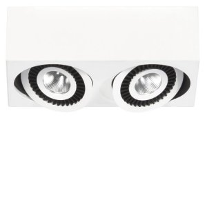 Spot wit Eye 2 lichts