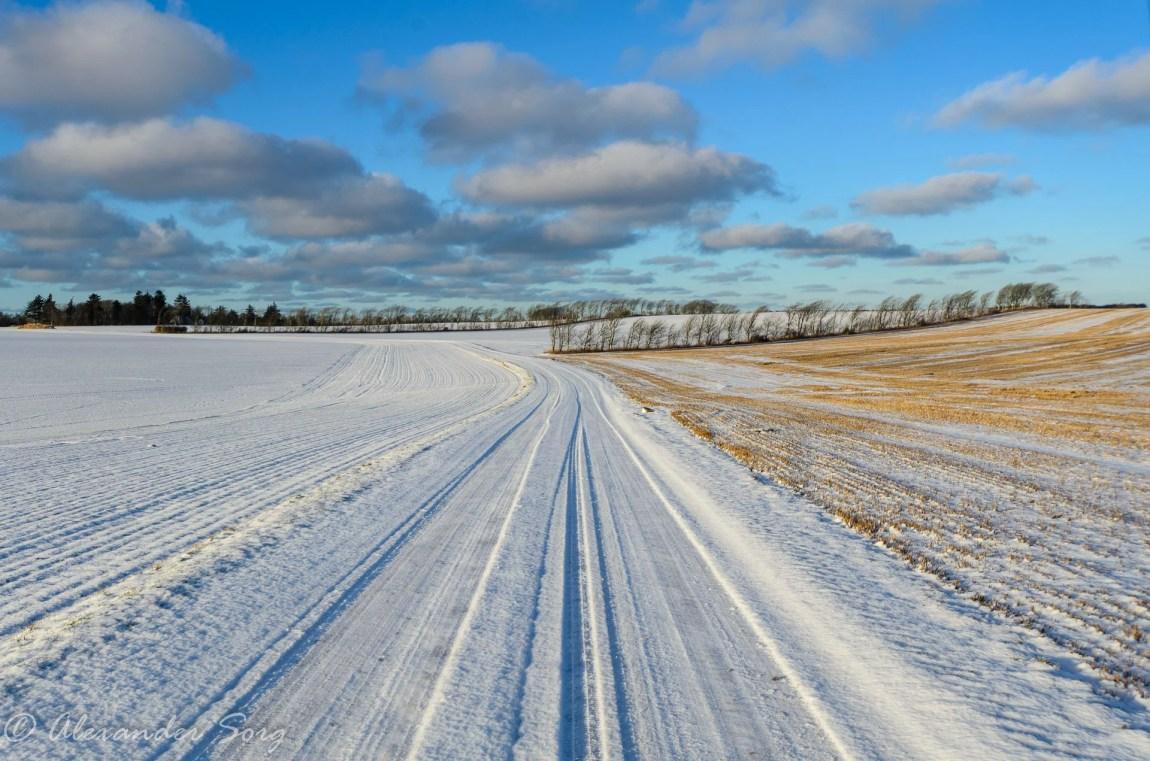 Weite und Leere im dänischen Winter