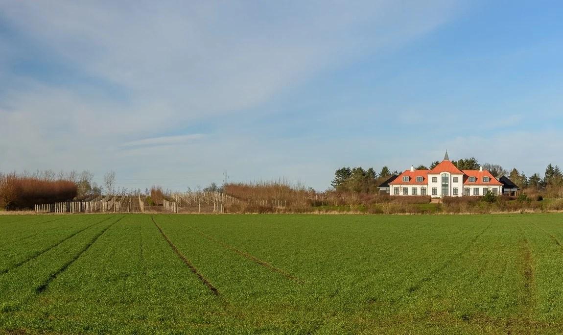 Wein Nordjütland Dänemark