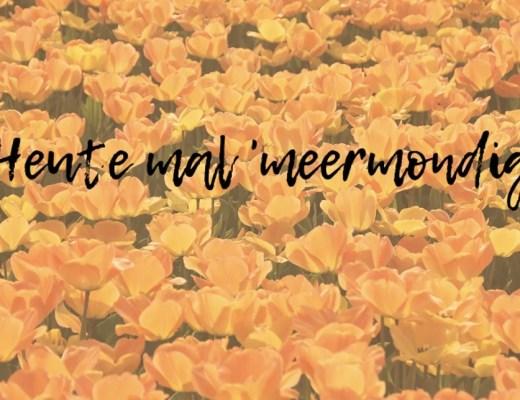 Meermond Blog Dänemark