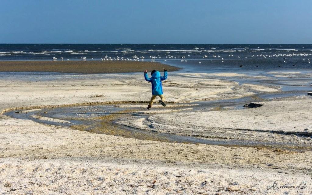 Sæby Strand Muscheln Urlaub mit Kind