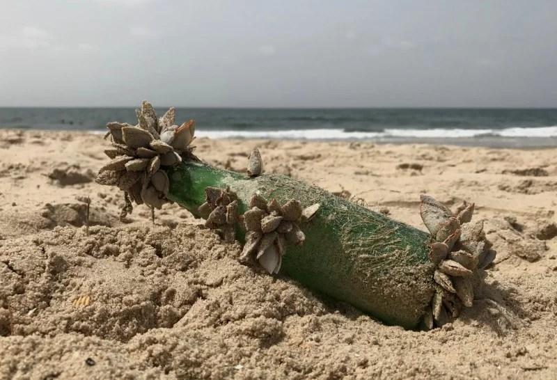 Flasche Strand Muscheln