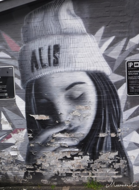 Aalborg Streetart Graffiti Tiendeladen