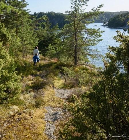 Meer Aussicht Schweden Schären