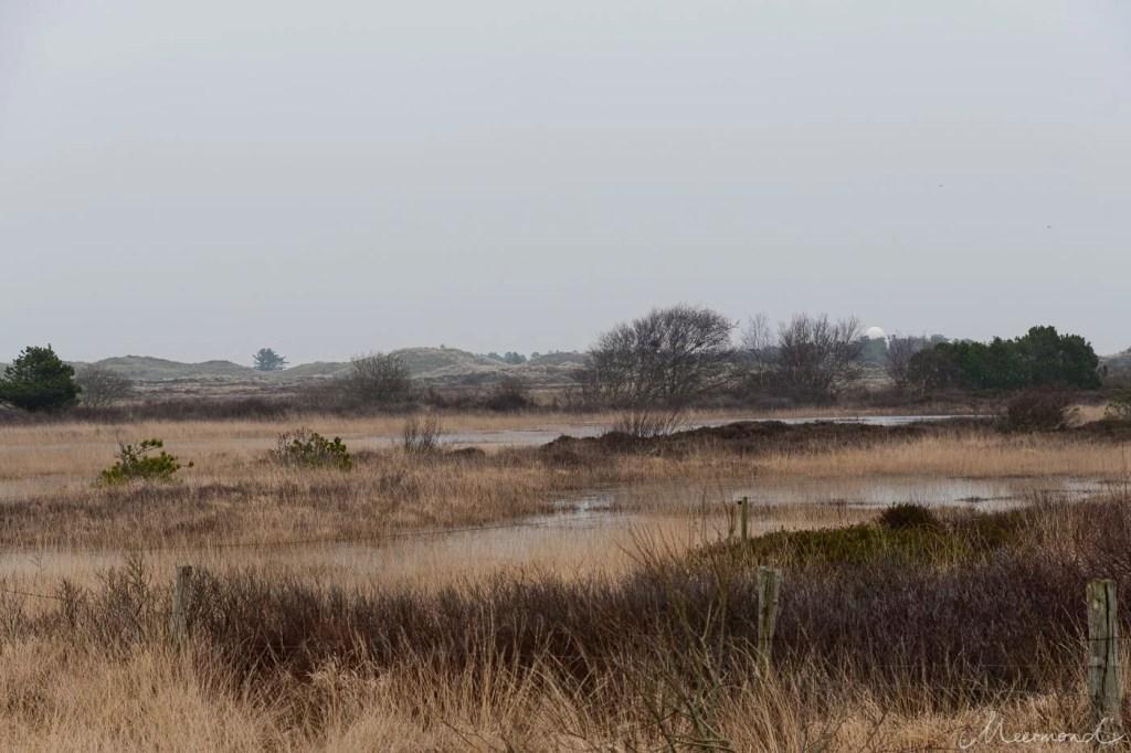 Rømø Landschaft