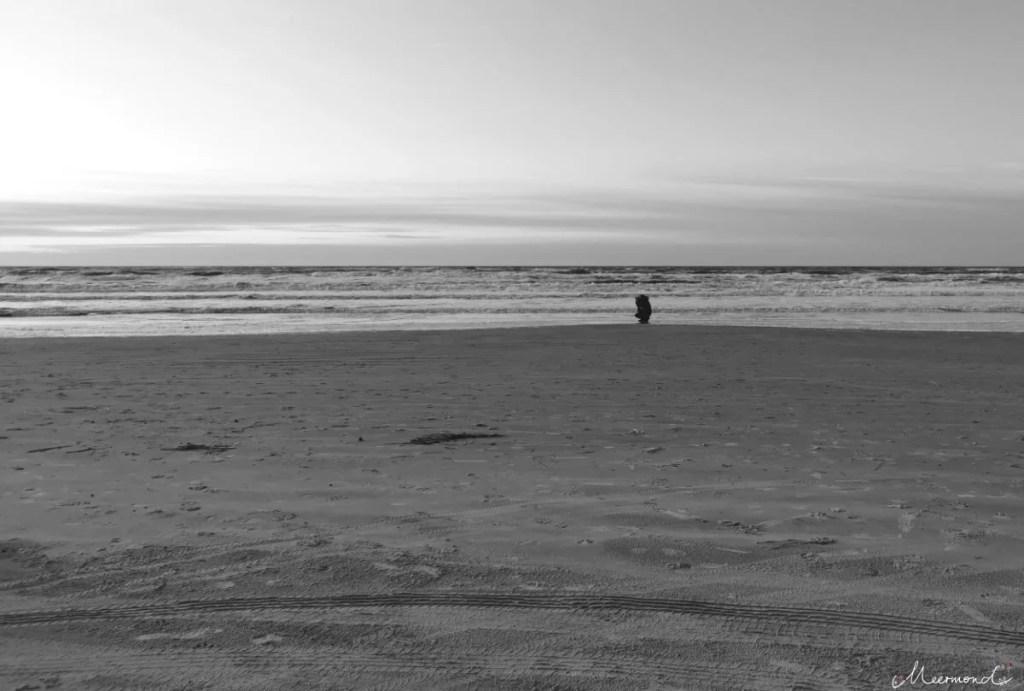 Fotograf am Strand in Saltum in Nordjütland