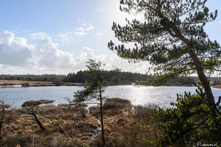 Tauche ein in die dänische Natur: unterwegs auf dem hærvej