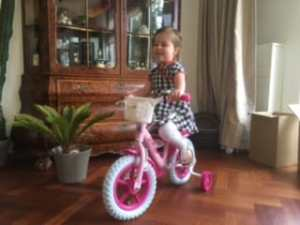 fiets3
