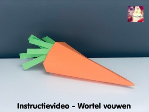 instructievideo 16 wortel vouwen