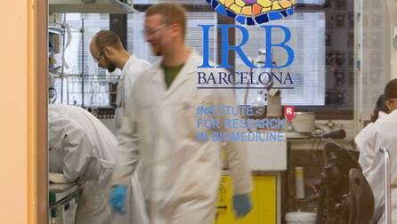 Research and knowledge | Meet Barcelona