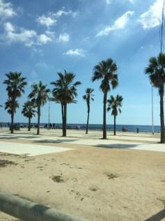 day-6a-bus-turistic3-la-barcoloneta