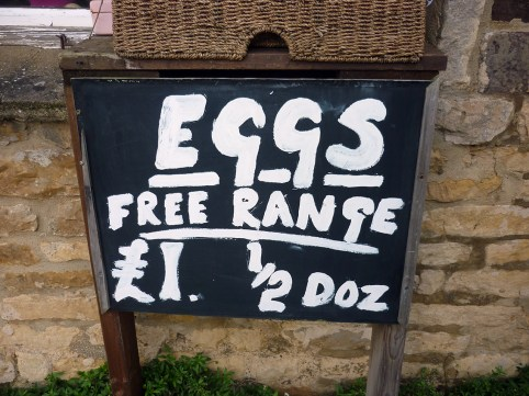 05 eggs