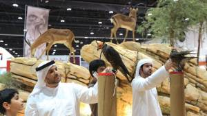 Abu Dhabi International Hunting and Equestrian Exhibition gets ready to launch