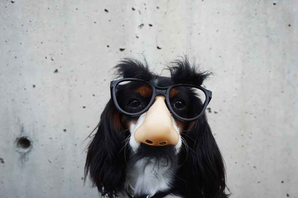 Incognito-Photo-by-Braydon-Anderson-on-Unsplash-Optimised