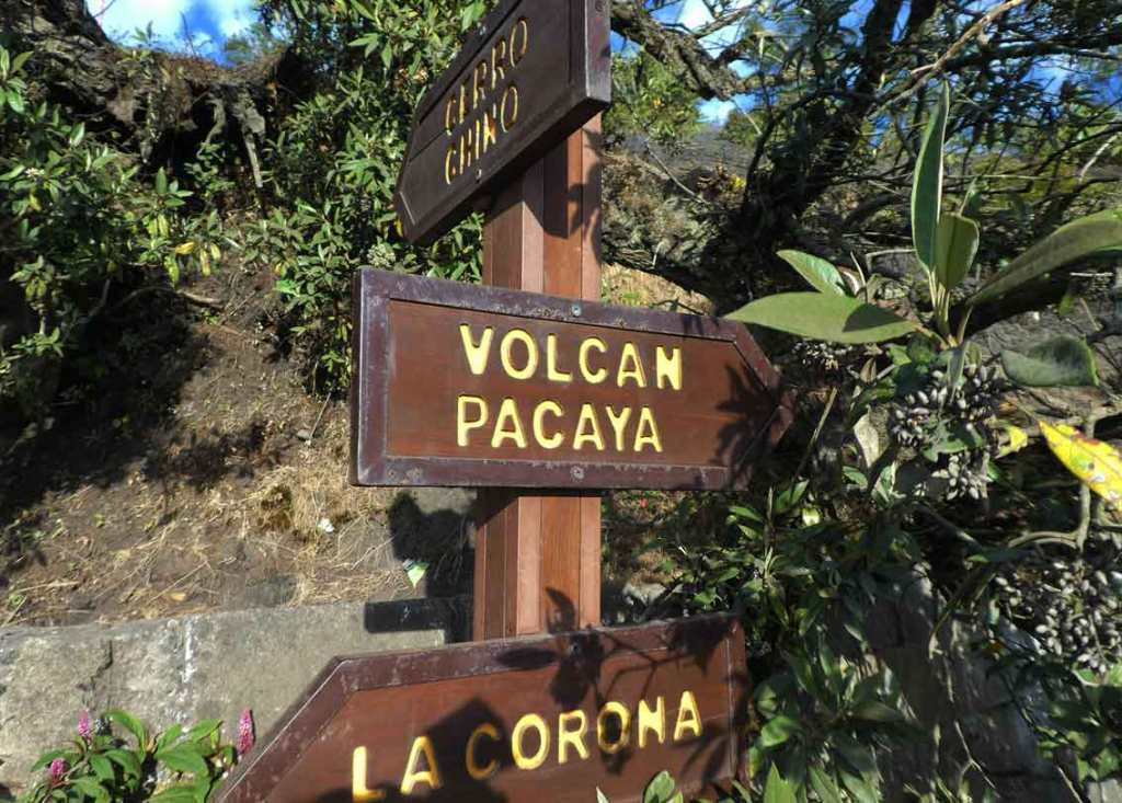 Visiting Guatemala? Then you need to add the Pacaya Hike to your itinerary. Love Marshmallows? On this hike you get to toast Marshmallows in an active Guatemalan Volcano! #GuatemalaTravel #Volcano #GuatemalaTravelBeautifulPlaces #GuatemalaTravelThingsToDo #GuatemalaTravelItinerary #VisitGuatemala #CentralAmerica