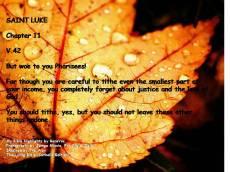 st. luke, chapter 11.8