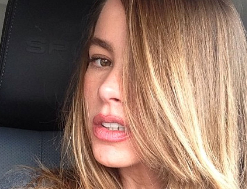 Five Celebs Who Nailed A Brunette To Blonde Hair