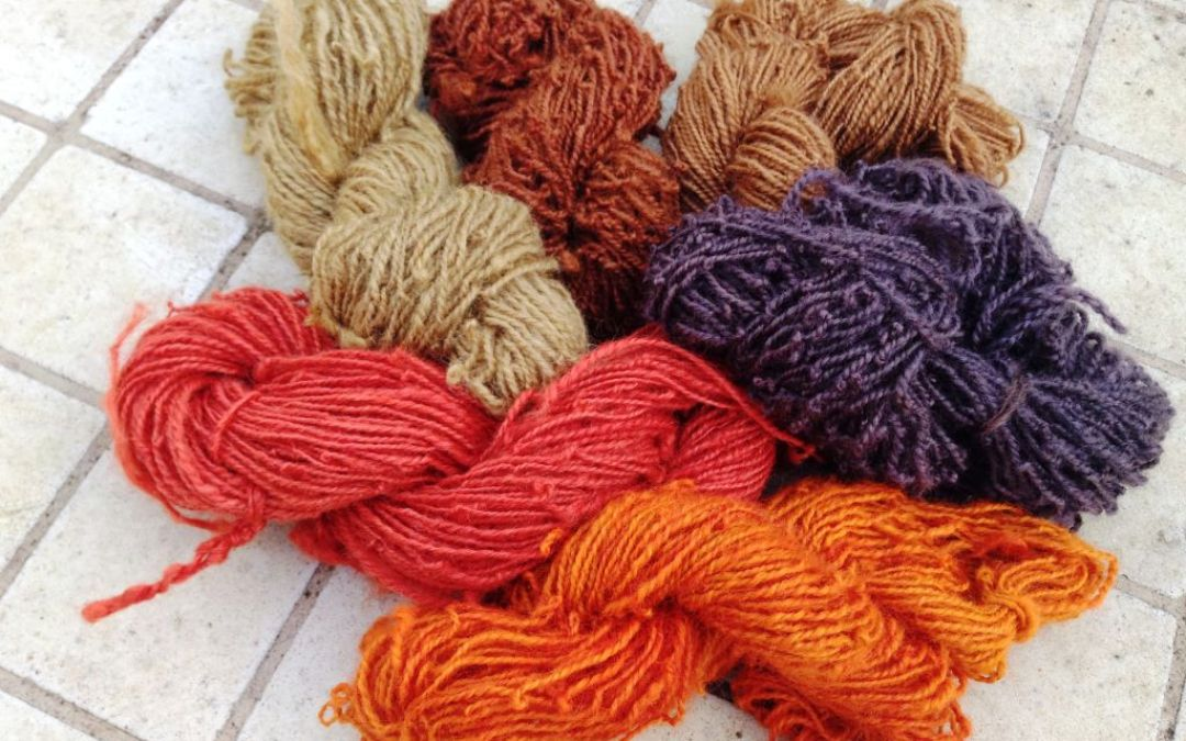 Natural Dyeing and Spinning Wool for Beginners-Workshop 28/29 October