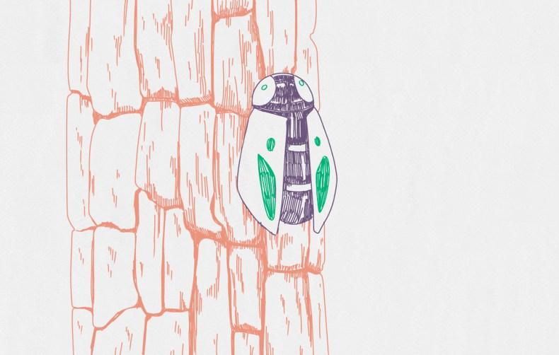dessin animalier insecte sur un tronc