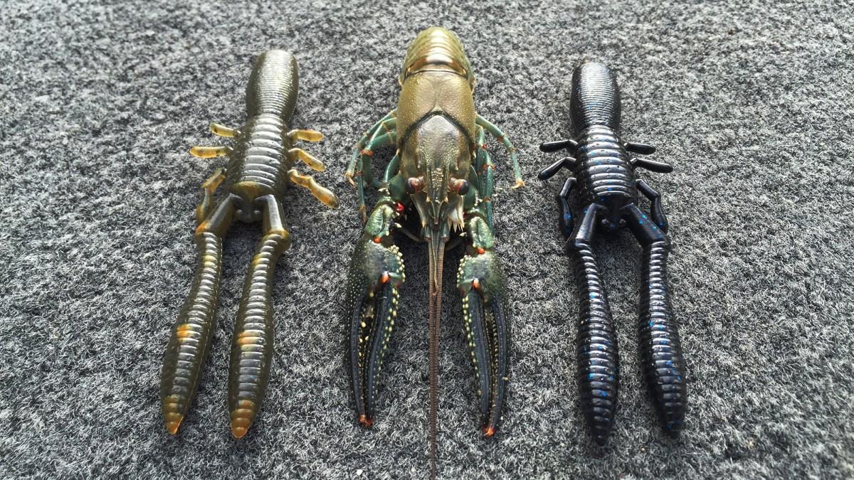Chris-Zaldain-Bottle-Shrimp-Crayfish
