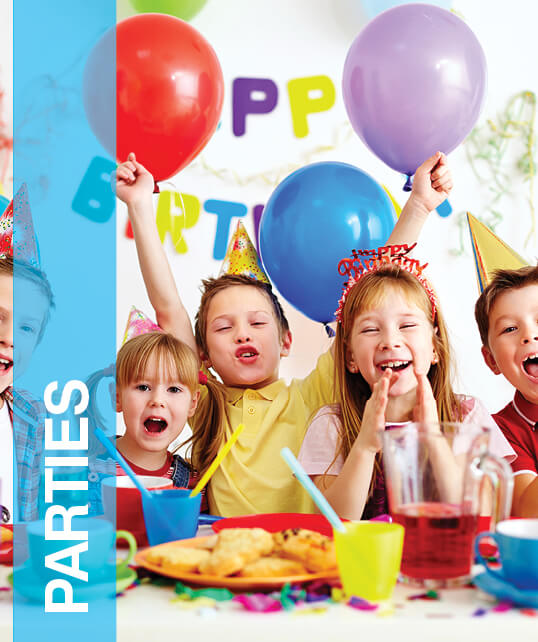 Category Images Fun Programs Parties