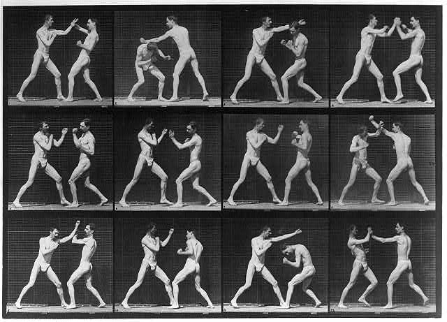 12-frame motion picture of 2 men boxing.