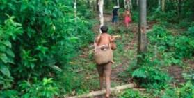 terras-indigenas-amazonia