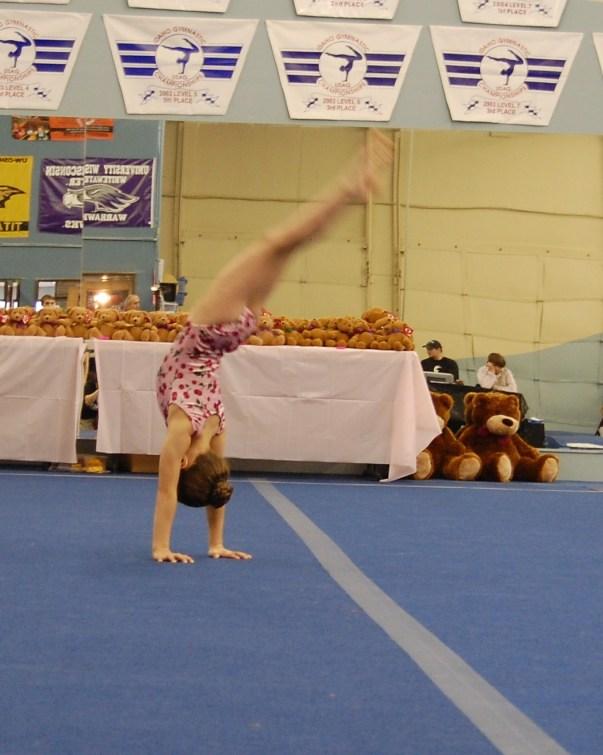 Teddy Bear 2010 Floor Handstand to Bridge - Level 4